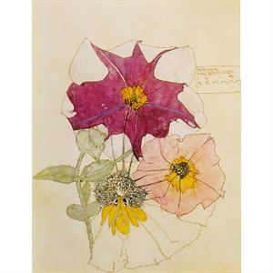 Picture of Mackintosh Study of Petunia Mounted Print