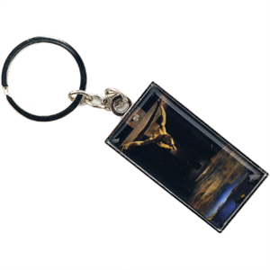 Picture of Dali Christ of St John of the Cross Keyring