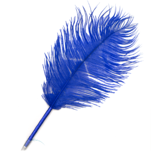 Picture of Ostritch Quill Pen